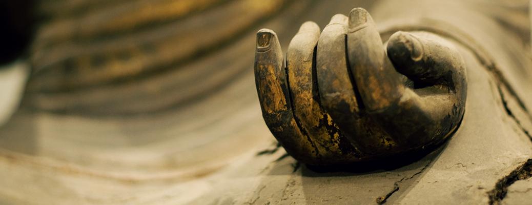 Buddha hands Alquimia