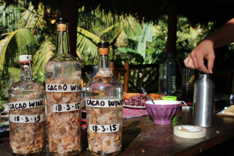 wine making with cacao at Alquimia