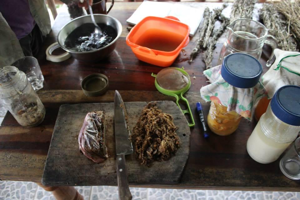 food fermentation Alquimia