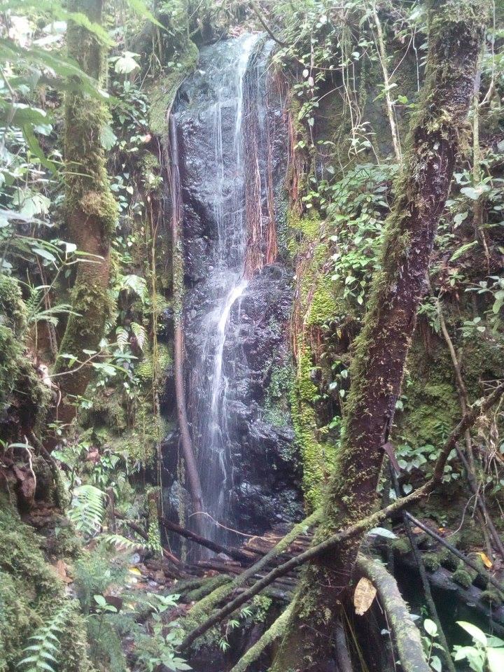 waterfalls forest walk Alquimia Portugal