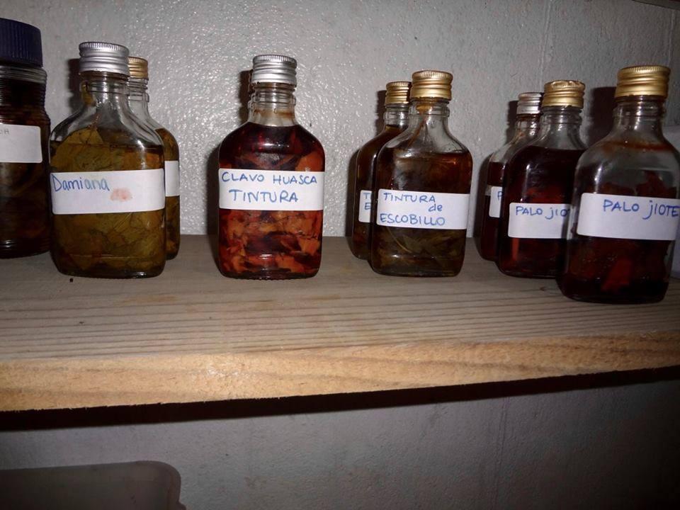 herbal remedies at Alquimia