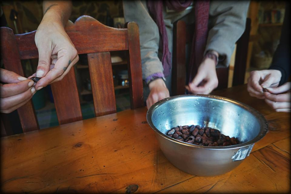 cacao workshop at Alquimia