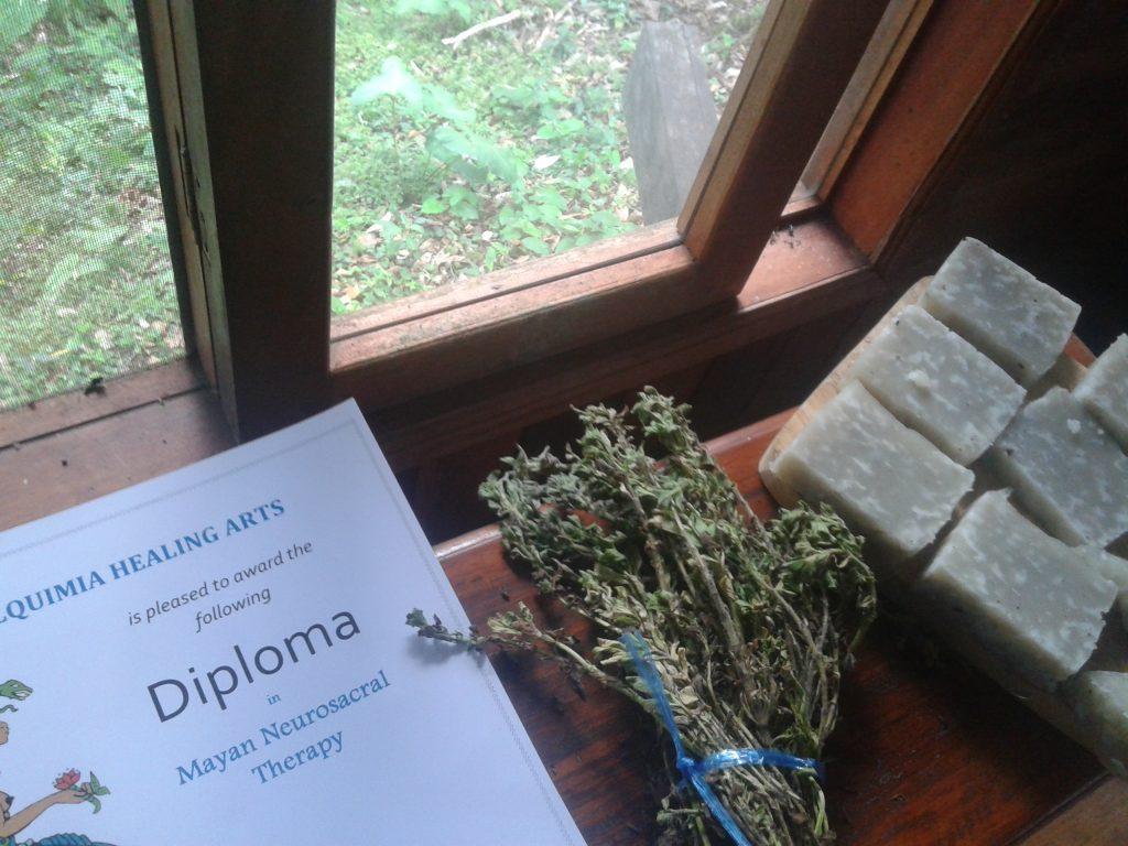 Maya Medicine Diploma Alquimia